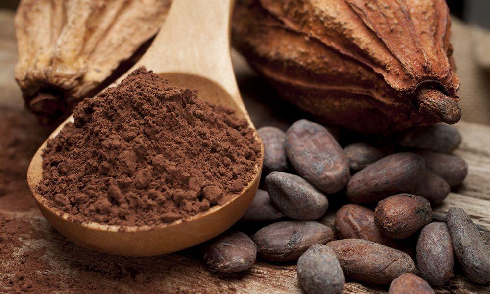 Ghana $600 Million Cocoa Plan Prioritises Processing, Trees